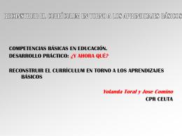 Currículum y aprendizajes básicos