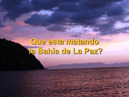 Que esta matando la Bahia de La Paz