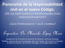 """""""Panorama de la responsabilidad civil en el nuevo Código Civil"""