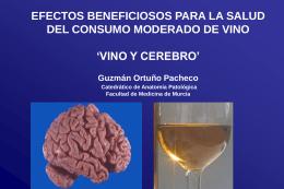 Reuniones/XXXIV reunion/vino y cerebro R