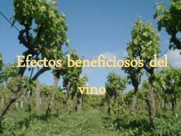 Efectos beneficiosos de el vino