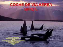 COCHE DE VIA AEREA DIFICIL (PPTminimizer)