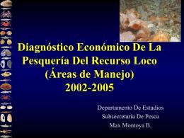 Diagnóstico económico de la pesquería del recurso loco 2002-2005