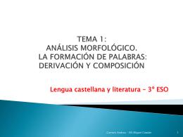 TEMA 1 Análisis morfológico. Composición y