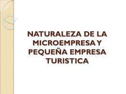 naturaleza de la microempresa y pequeña empresa turistica