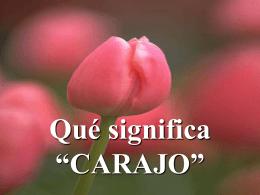 """Qué_significa """"CARAJO"""" - Holismo Planetario en la Web"""