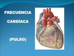 frecuencia cardíaca (pulso)