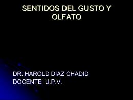 SENTIDO DE GUSTO Y OLFATO