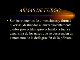 ARMAS DE FUEGO (2)