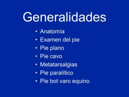 01- Pie-Generalidades - lerat