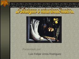 diapositivas-del-bodegon1