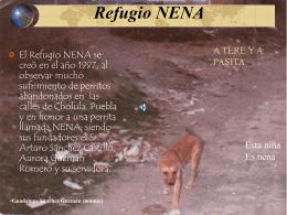 Refugio NENA - Huellas en el Corazón