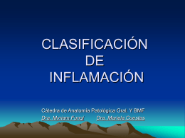 CLASIFICACIÓN DE INFLAMACIÓN