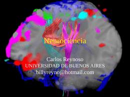 13 - Neurociencia