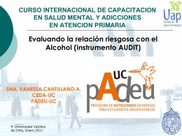 Presentación AUDIT V Cantillano Enero 12 2011