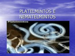 PLATELMINTOS E NEMATELMINTOS