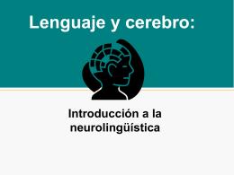 Lenguaje y cerebro:
