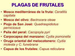 PLAGAS DE FRUTALES