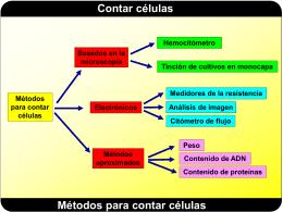 Contar células Funcionamiento del contador de (2
