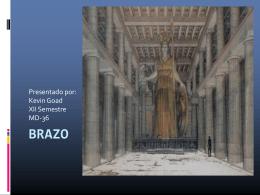 Brazo - Telmeds.org