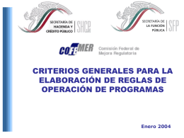Criterios Generales para Emitir Reglas de Operacion 2004