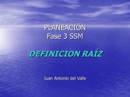 Fase 3 SSM DEFINICION RAÍZ Juan Antonio del Valle