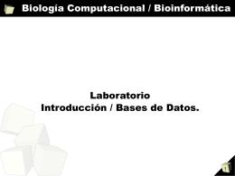 Biología Computacional / Bioinformática