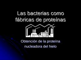 Las bacterias como fábricas de proteínas