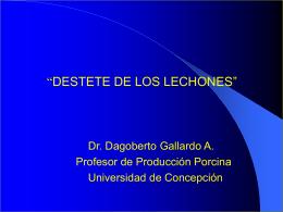 Ventajas Desventajas - Universidad de Concepción