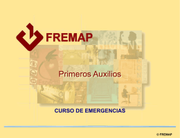 fremap - WordPress.com