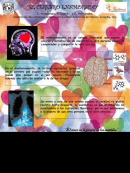"""""""El Cerebro enamorado"""""""