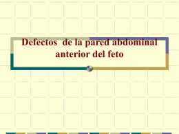 Defectos de la Pared Abdominal