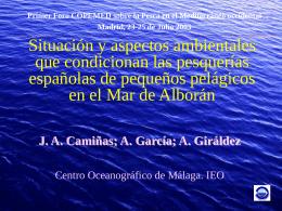 Situación de las pesquerías españolas de pequeños pelágicos en