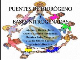 puentes y bases nitrogenadas
