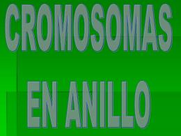 CROMOSOMAS ANILLO
