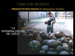 PANES DE PIEDRA