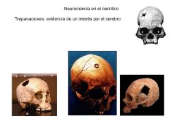 Historia Neurociencia