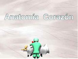 CORAZON ANATOMIA
