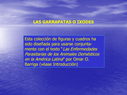 Garrapatas - Veterinaria.org