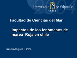 Marea Roja - Universidad de Magallanes