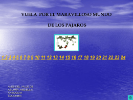 mineduca