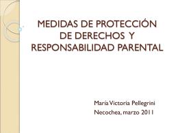 MEDIDAS DE PROTECCIÓN DE DERECHOS Y