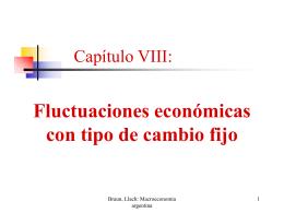Capítulo VIII: Fluctuaciones económicas con tipo de cambio fijo