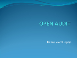 Open Audit Danny Viorel