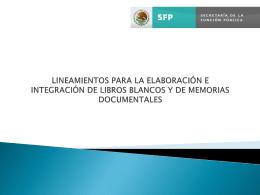lineamientos libros blancos - Escenario Político y Gestión Pública