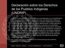 Declaración de Naciones Unidas para los Derechos de