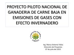 Resumen Proyecto Piloto