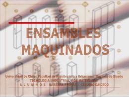 ENSAMBES Y UNIONES