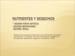 Nutrientes y desechos - Sistema Porta hepático.