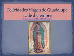 Felicidades Virgen de Guadalupe - seed394internshiplampman-g